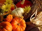 Happy Thanksgiving from El Monte RV!