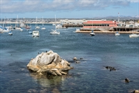 Port of Monterey, CA
