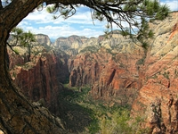 View from Angel's Landing in Zion National Park